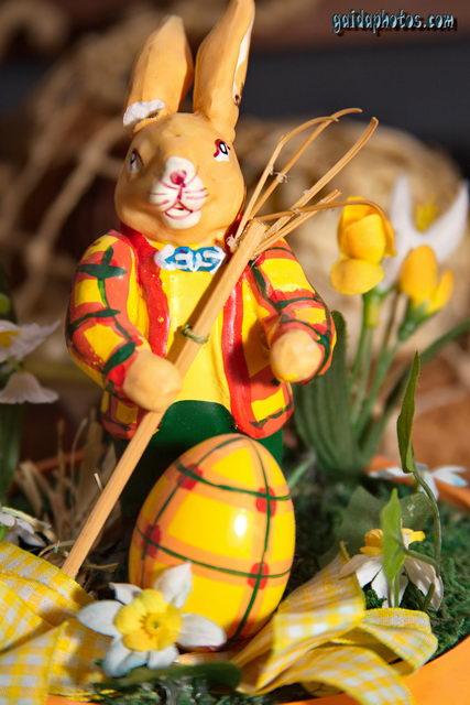 Lustige Spruche Und Fotos Zu Ostern