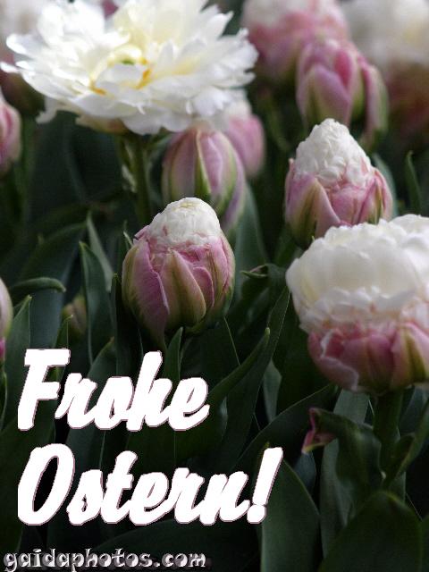 Ostern und Osterfest: Sprüche, Wünsche, Weisheiten, Zitate, Aphorismen