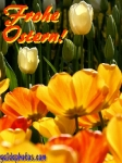 oster-karte-tulpe-gelb-10